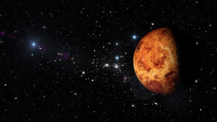 Der Liebesplanet Venus wandert derzeit durch den leidenschaftlichen Skorpion. (Foto)