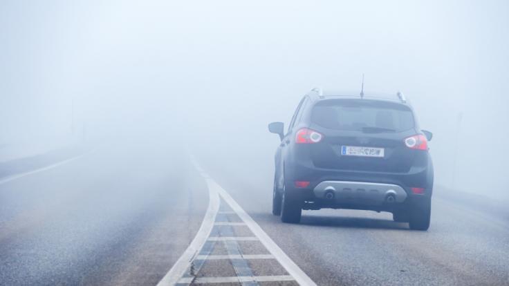 Dichte Nebelfelder sorgen für trübes Wochenende. (Foto)