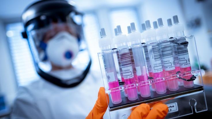 Der Osten Deutschlands scheint von der Coronavirus-Epidemie weniger stark betroffen zu sein wie der Westen - Studien sollen nun den Gründen nachgehen. (Foto)