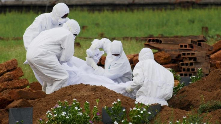Ein 12-Jähriger ist nach einer Nipah-Infektion gestorben. (Foto)