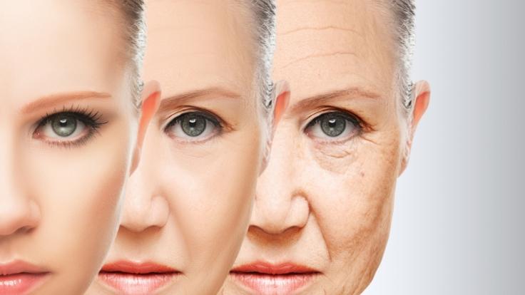 Geht es nach de Grey, könnte der Alterungsprozess bald der Vergangenheit angehören.