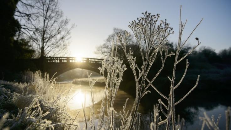 Die erste Februar-Woche 2018 wird frostig-kalt. (Foto)