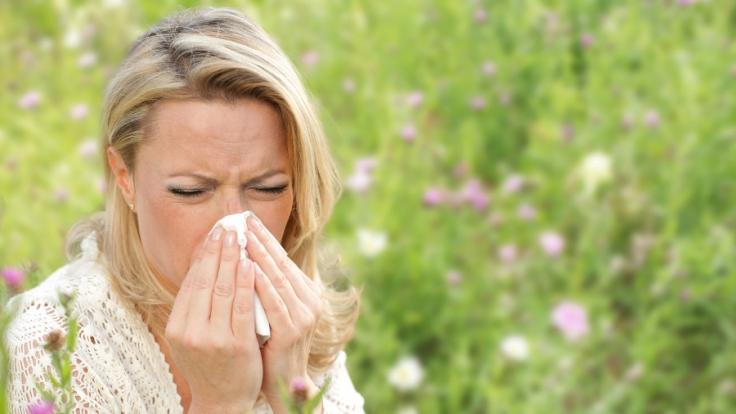 Allergiker kämpfen oft auch in den eigenen vier Wänden gegen die Pollen.