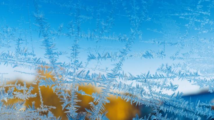 Droht uns eine eisiger Januar? (Foto)