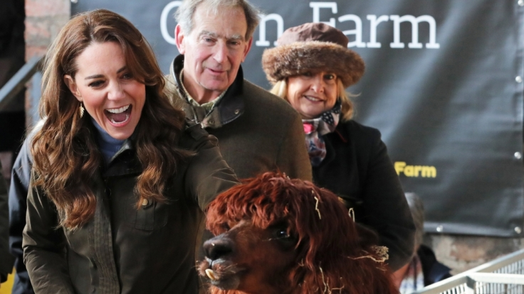 Kate, Herzogin von Cambridge, streichelt ein Alpaka (Vicugna pacos) während eines Besuchs auf der