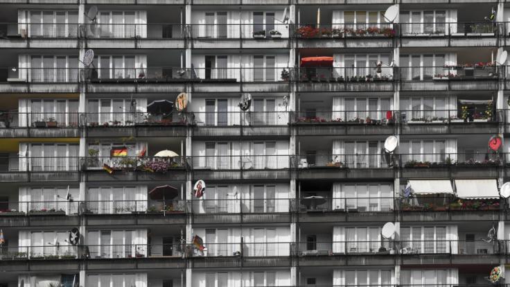 Weil es seinen Welpen retten wollte, stürzte ein Mädchen (12) in Indien aus dem neunten Stock eines Hochhauses. (Symbolfoto) (Foto)