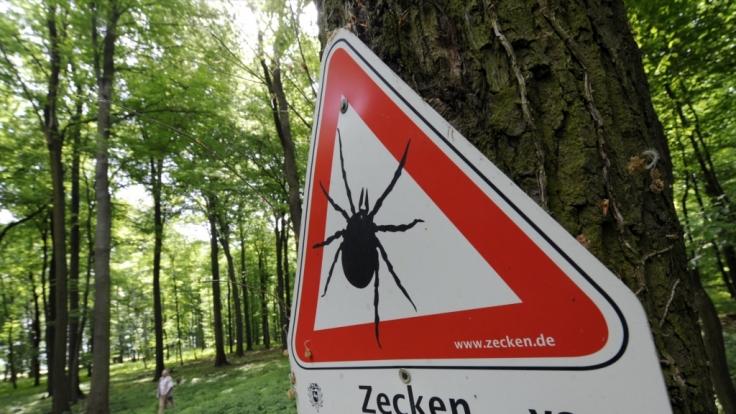 Vor allem der Süden Deutschlands zählt zu den FSME-Risikogebieten - das Virus wird hauptsächlich von Zecken übertragen.