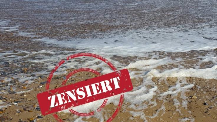 Wurde hier wirklich eine Meerjungfrau an Land gespült? (Foto)