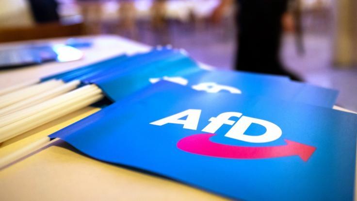 Aktuellen Umfragen zufolge hat die Alternative für Deutschland in der Wählergunst zugelegt. (Foto)
