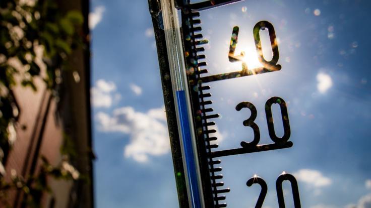 In der letzten Juni-Woche 2019 steht Deutschland ein handfester Hitze-Hammer mit Temperaturen knapp vor der 40-Grad-Celsius-Marke bevor.