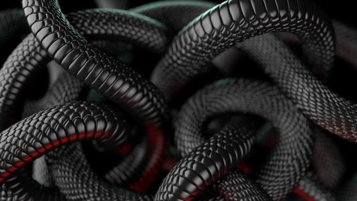 Eine 5-Jährige wurde Opfer eine Schlangen-Attacke. (Foto)
