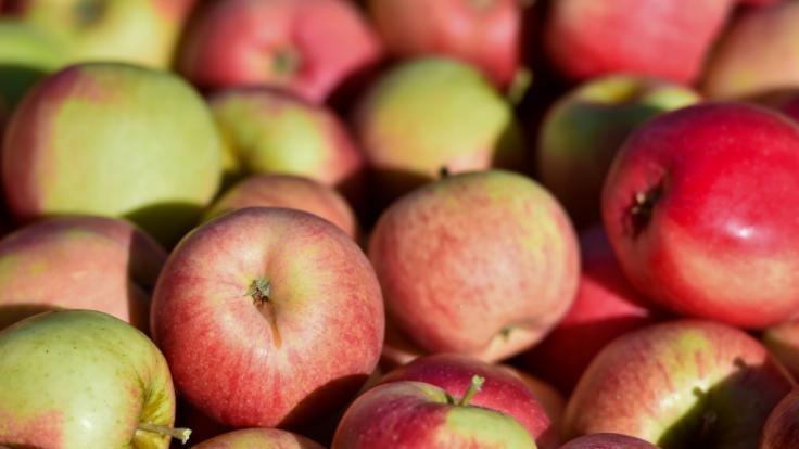 An apple a day für einen gesunden Darm - dank Bakterien und Viren.