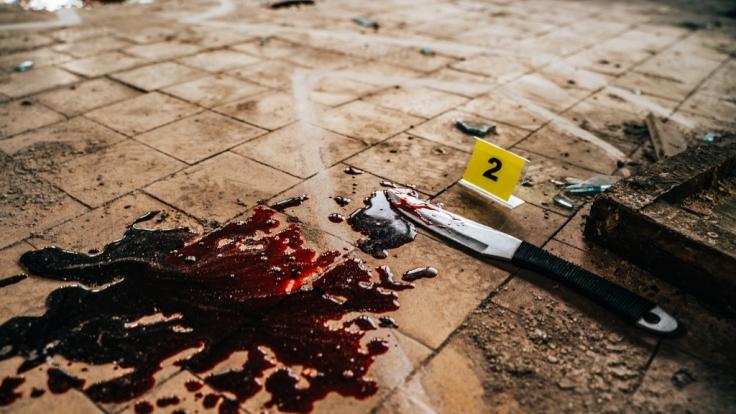 Babak Khorramdin wurde von seinen eigenen Eltern ermordet und zerstückelt. (Foto)
