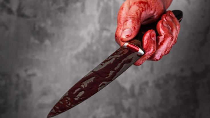 In Wien ersticht und zerstückelt eine Frau ihren Freund. (Foto)