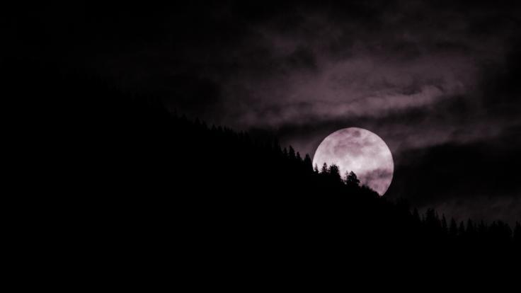 Der April-Vollmond wird auch als pinkfarbener Mond bezeichnet, aber warum?