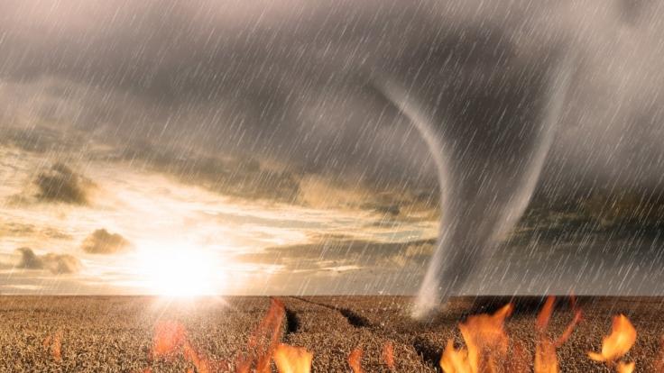 Gleich mehrere Wetter-Extreme beherrschen aktuell Südeuropa. (Foto)
