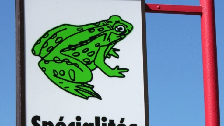 Verboten und trotzdem auf der Karte: Froschschenkel. (Foto)