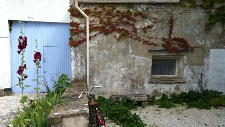 Stockrosen, alte Gemäuer, ganz viel Charme - die Île de Ré. (Foto)