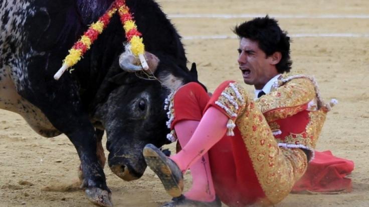 Der Torero Víctor Barrios starb beim Stierkampf. (Foto)