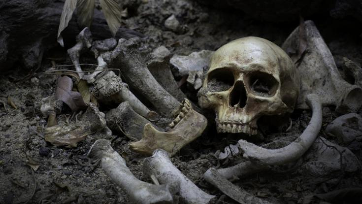 Ermittler haben im Haus eines mutmaßlichen Frauen-Serienmörders fast 4000 Knochenteile gefunden. (Foto)