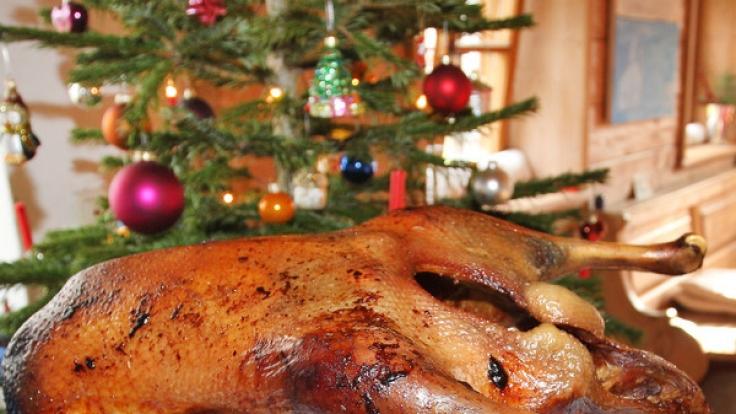 Damit man den Weihnachtsbraten genießen kann, sollte man auf die Herkunft der Gans achten.