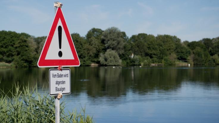 Badeverbot amHohnsensee in Hildesheim aufgrund von Blaualgen.