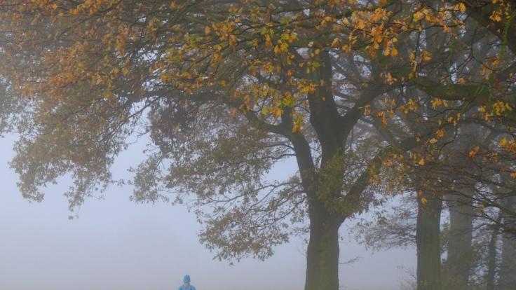 Der Feiertag am Montag, 3. Oktober, startet mit Herbst-Nebel.