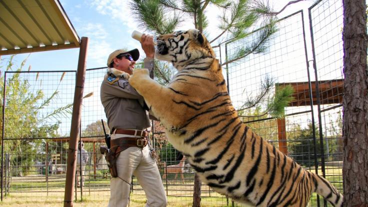 Der selbst ernannte Tiger King, Joe Exotic.