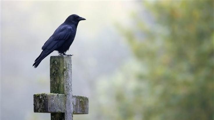 Schwarz ist bei der Kleidungswahl für Trauerfeiern weiterhin die dominierende Farbe. (Foto)