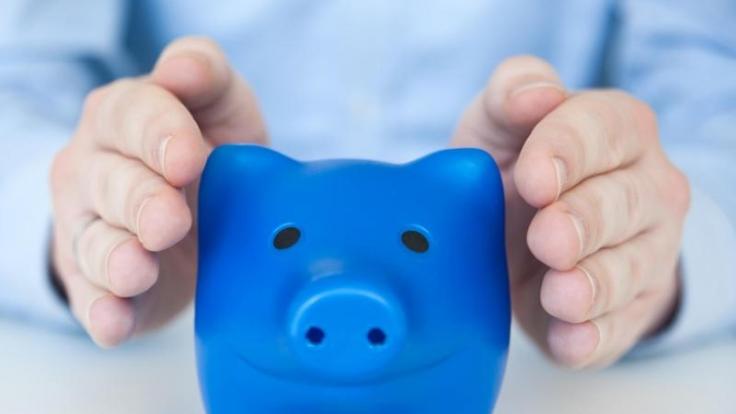 Beim Preisvergleich freut sich das Sparschwein. (Foto)