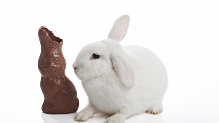 Schokohasen gibt es an Ostern in Hülle und Fülle - allerdings mit deutlichen Preis- und Qualitätsunterschieden.