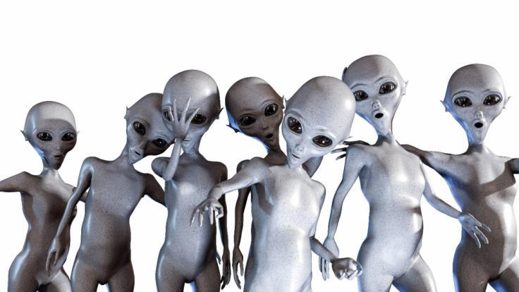 Ein verurteilter Sextäter in den USA behauptet, mit Aliens neun Kinder gezeugt zu haben. (Foto)