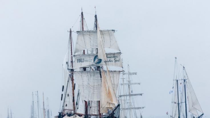 Bei der Kieler Woche, die am 17.06.2017 beginnt, soll der Dreimaster Thor Heyerdahlauch in diesem Jahr wieder die traditionelle Parade anführen. (Foto)