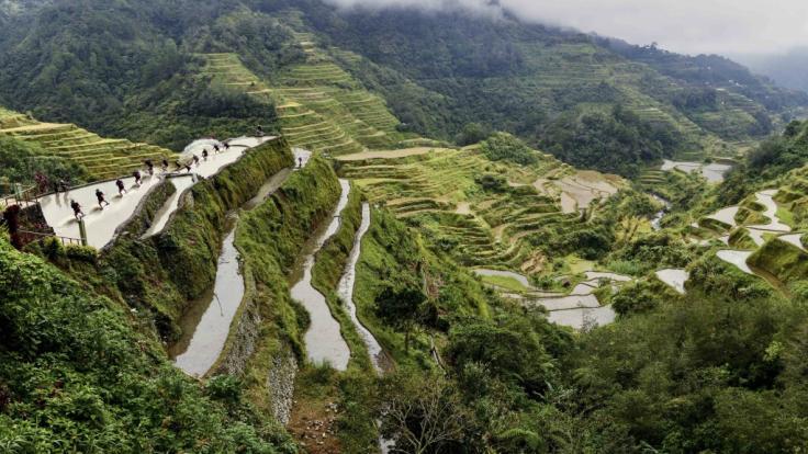 Die Reisterrassen der Ifugao auf Luzon.