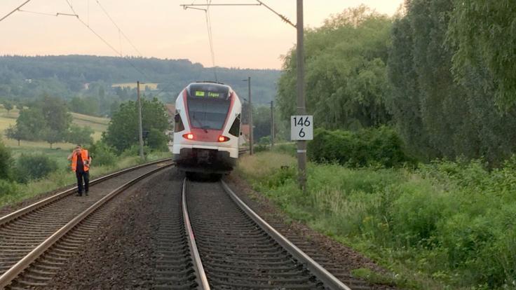 Eine Regionalbahn steht auf einem Gleis auf der Strecke zwischen Singen und Engen. Zuvor war die Bahn in eine Schafherde gefahren, dabei starben 45 Tiere.