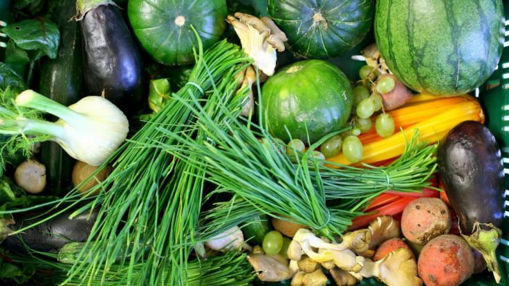 Wie gefährlich ist Gemüse für den Menschen wirklich? (Foto)