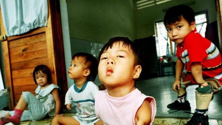 Auch heute noch sind die Auswirkungen des Einsatzes von Agent Orange in Vietnam ein großes Problem.