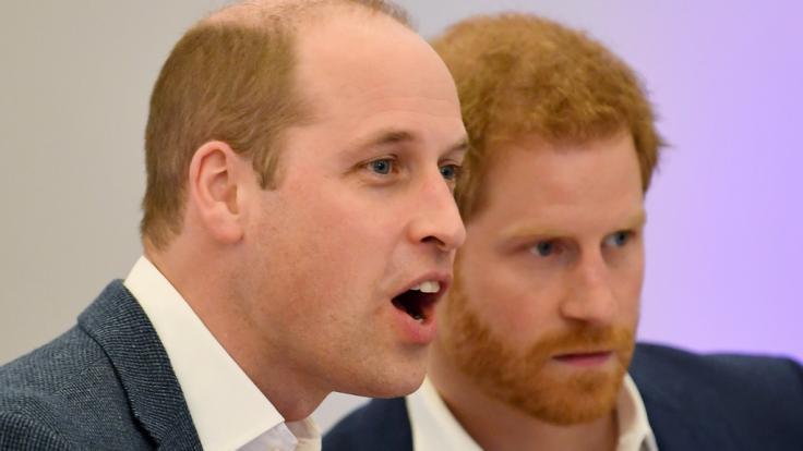 Angesichts der jüngsten Royals-News könnte man durchaus Bauklötze staunen - ganz so wie Prinz William und Prinz Harry auf diesem Foto. (Foto)