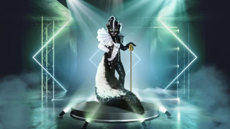 """Echt dufte! Das Stinktier betört bei """"The Masked Singer"""" 2021 alle Sinne. (Foto)"""