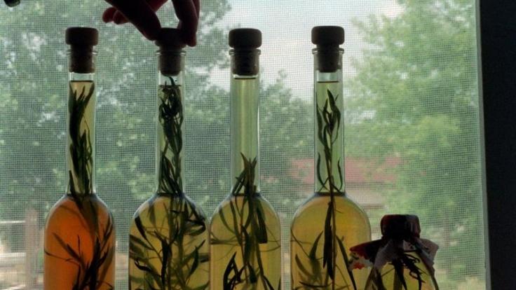 Vorzüglich macht sich der Estragon zu Fleisch und Fisch, verfeinert aber auch Öl für Salat-Dressings.