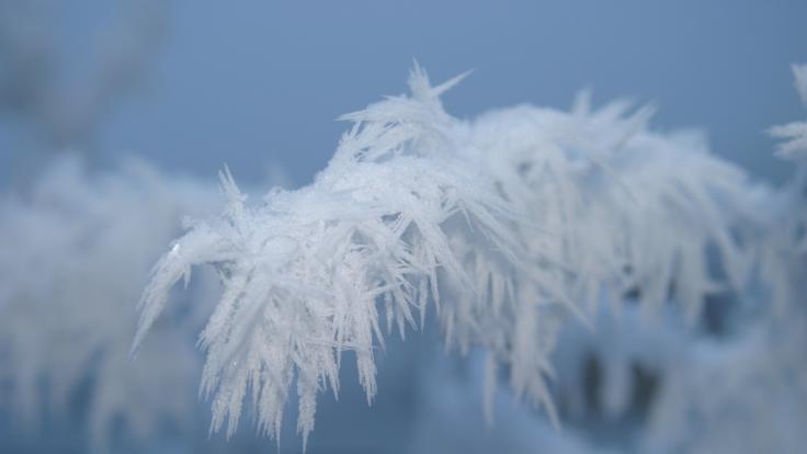 Laut Meteorologen könnte bis März noch einmal richtig kalt werden. (Foto)