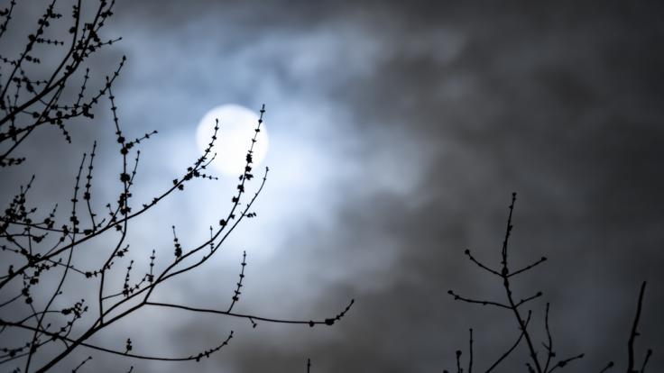 Der November-Vollmond taucht in den Halbschatten der Erde ein.