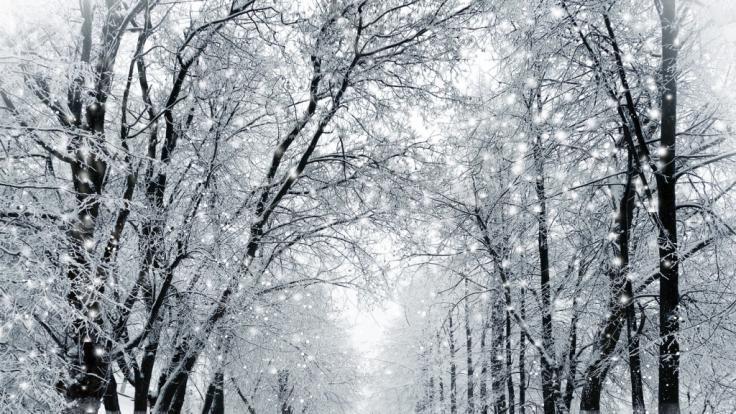Gibt es weiße Weihnachten?