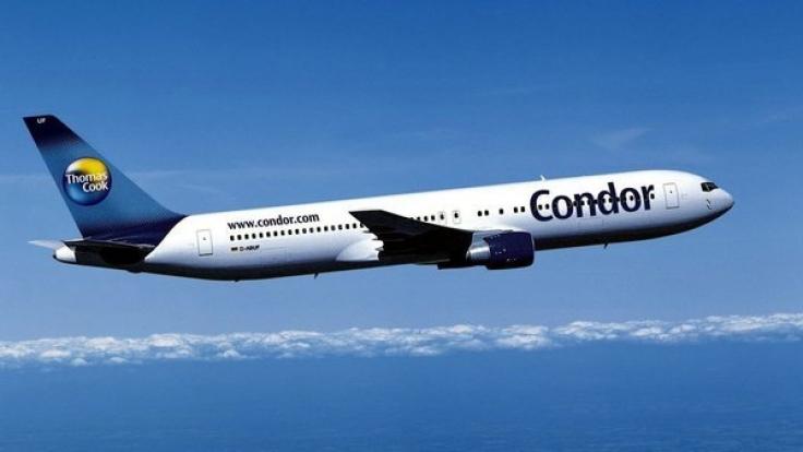 Condor hat mit einem Sex-Skandal zu kämpfen. (Foto)
