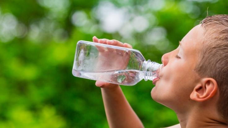 Forscher behaupten: Wir brauchen gar nicht so viel Flüssigkeit. (Foto)