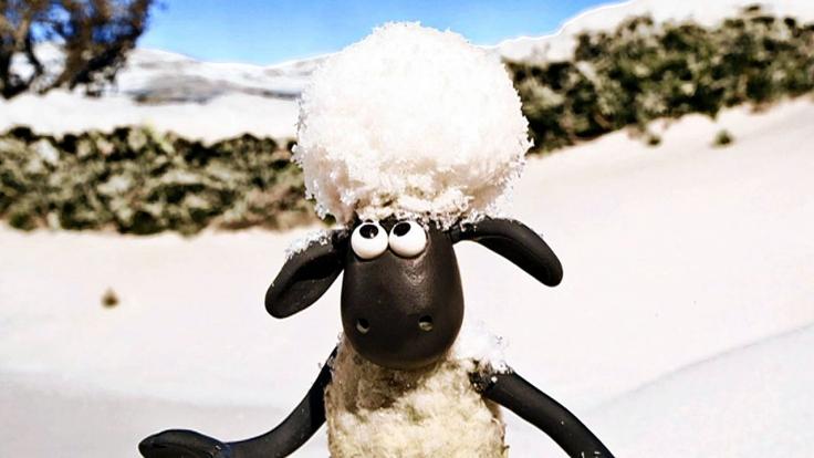 Kika Shaun Das Schaf