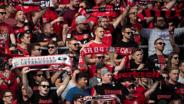 Unter ihren Schals feuern die Fans Bayer 04 Leverkusen an. (Symbolbild)