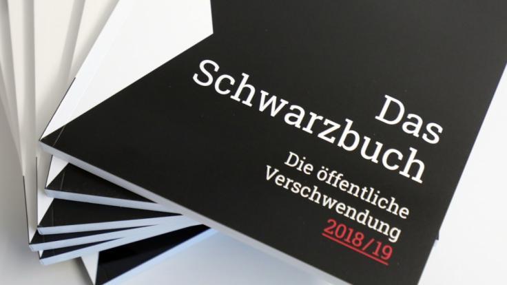 """Der Bund der Steuerzahler stellt auf einer Pressekonferenz das neue """"Schwarzbuch"""" vor. (Foto)"""