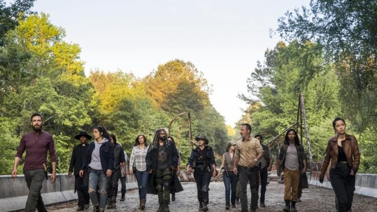 """Wie geht es in Staffel 9 von """"The Walking Dead"""" weiter? (Foto)"""