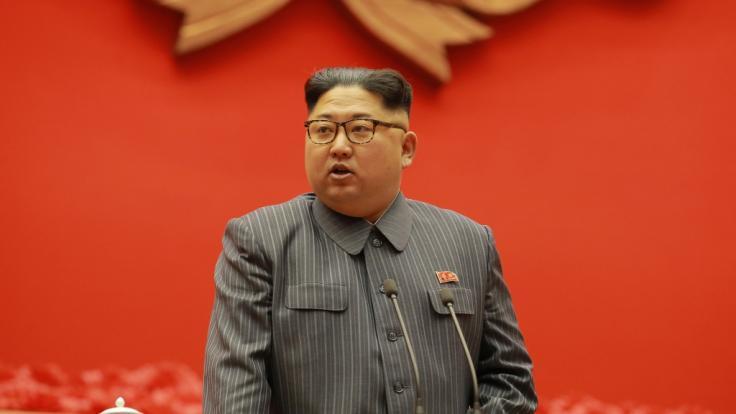 Woher hat Norkoreas Machthaber Kim Jong-un sein Vermögen? (Foto)